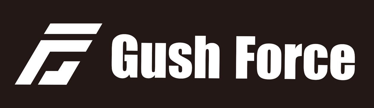 ガッシュフォース